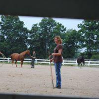 Holly Horseless Series- February (Sat.)