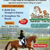Horse riding summer camp in bangalore at zippy horse for Academie de cuisine summer camp