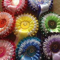 Garth Hunt Open Show Jumping Competition Team &amp Individual.
