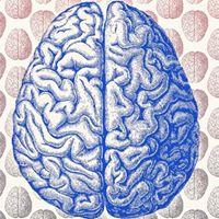 Brain enhancement tablets