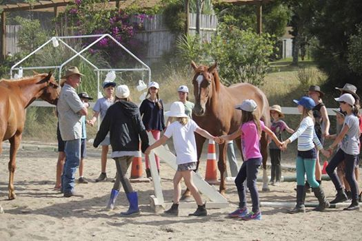 5 Day Residential Horse Camp