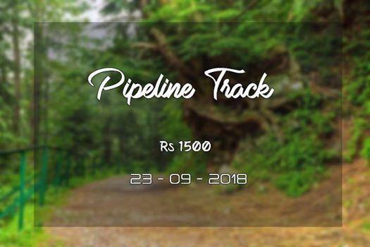 Pipeline Track