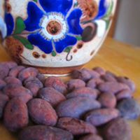 Wonderfoods Of The New World Cacao - Food Of The Gods