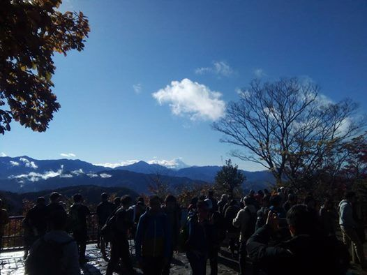 Confirmed Nature & History Hiking at Mt. Takao