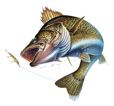2017 walleye battle fishing tournament at storm lake for Best time to fish for walleye