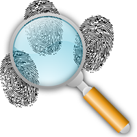 NYPL Investigations