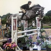 Weston Lawns Young Horse Championships 2018