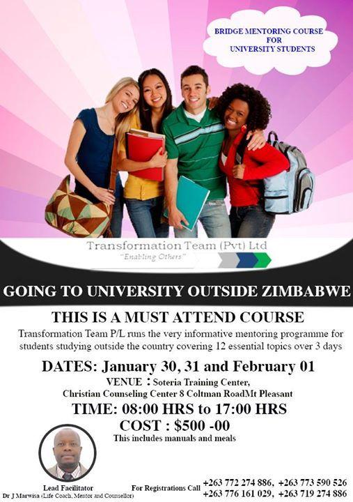 Bridge Mentoring Course For University Students