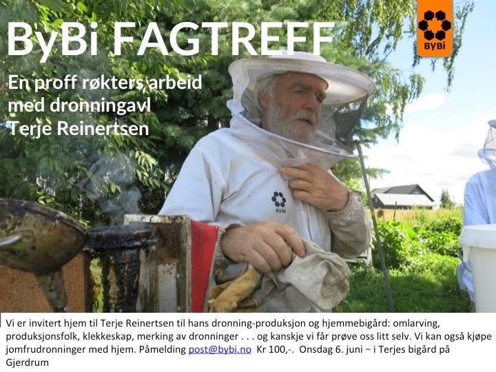 www gulesider no kart Dronningavl med Terje Reinertsen at https://kart.gulesider.no  www gulesider no kart