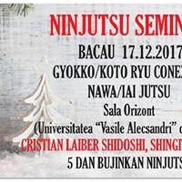 Seminar Bujinkan Ninjutsu Bacau