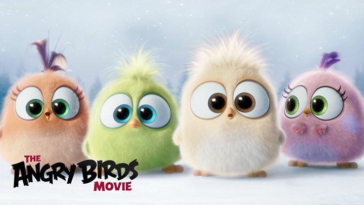 Carnival Movie Night-Angry Birds