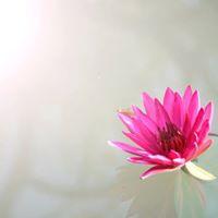 Meditation - Lr knna din inre vgvisare Egot vs Sjlen