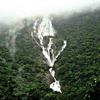 Dudhsagar Waterfall trek with OV (Batch 1)