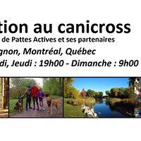 Initiation au canicross - Parc Angrignon - 23 juillet