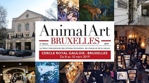 """Résultat de recherche d'images pour """"animal art brussels photos"""""""