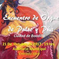V Encuentro de Orquestas de Pulso y Pa &quotCiudad de Boadilla&quot