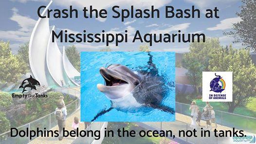 crash the splash bash at mississippi aquarium gulfport