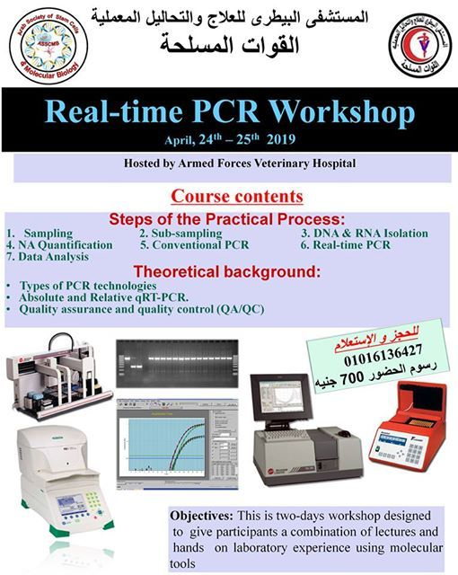 Real-time PCR Workshop at Egypt Cell Bank, Cairo