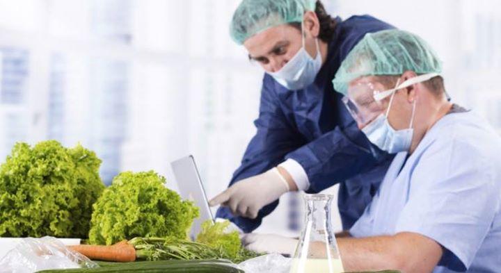 Internal Food Safety Auditor  Isofssc 22000 (TV)