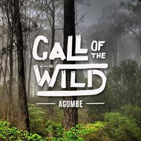 Call of the Wild  Agumbe