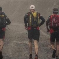 Alpha Training - Wellington