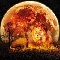 New Moon Leo and the Solar Eclipse