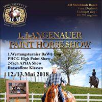 1. Langenauer Paint Horse Show