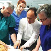 Cadaver Lab observation workshop - 6 hour