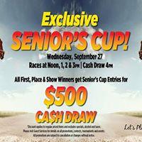 Seniors Cup
