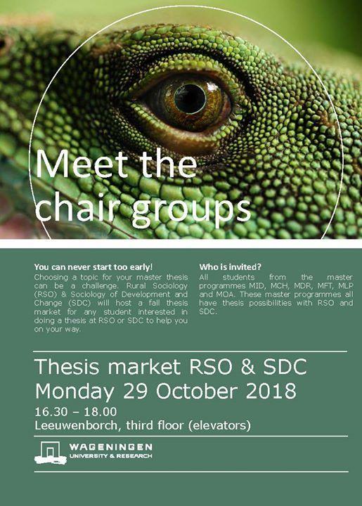 Fall Thesis market RSO and SDC at Rural Sociology Group