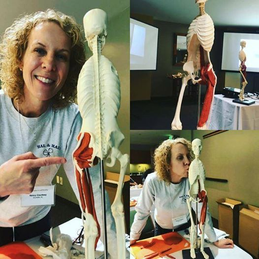Balanced Body Anatomy In 3d Instructor Training Workshop At Suncoast