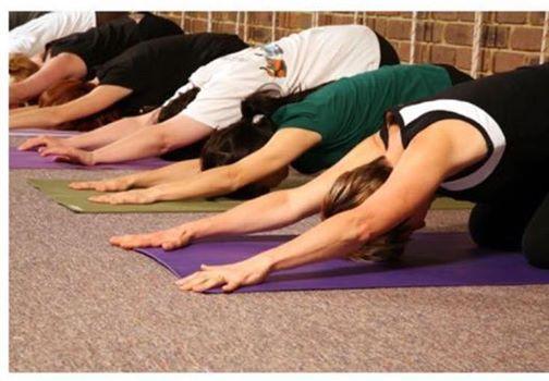 Five Week Beginners Yoga Course