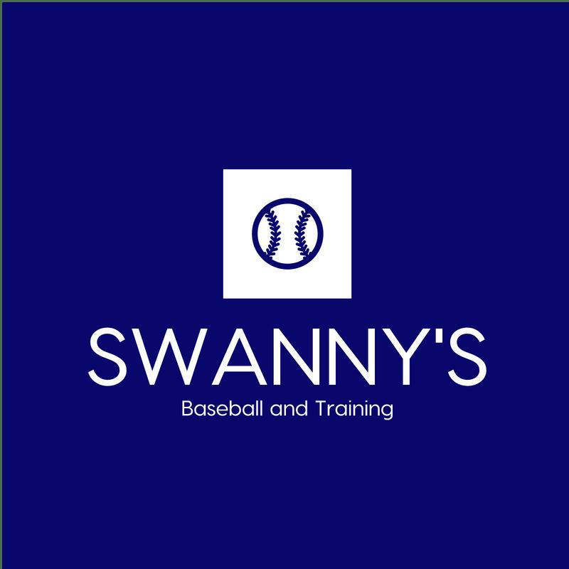 2019 January Baseball and Mental Training Camp
