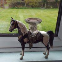 Hallamshire Model Horse Show