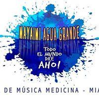 Todo el mundo dice Aho - Medicine music festival