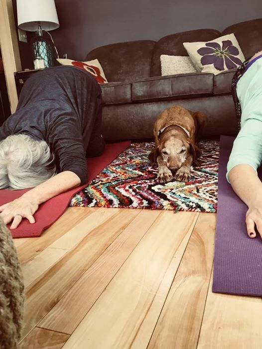 Charity YOGA for Sandi Paws Rescue at Natural Healthy