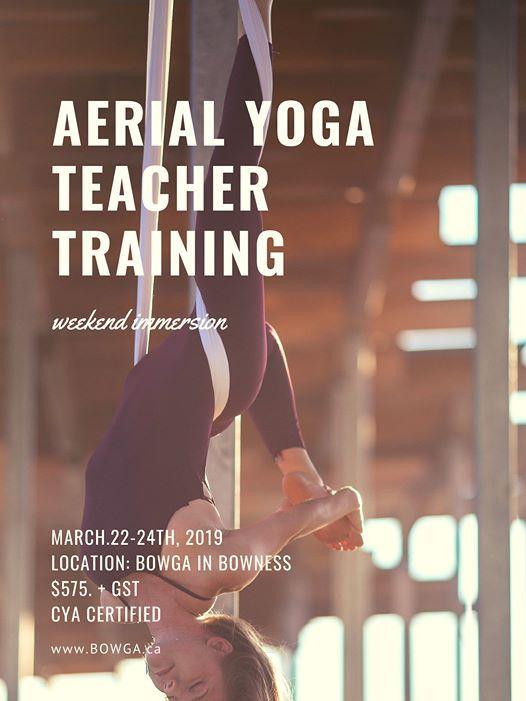 Aerial Yoga Teacher Training YYC