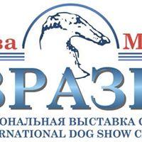 - 2017. Tatra Shepherd Dog 3xCACIB
