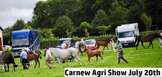Carnew Agri Show - July 20th