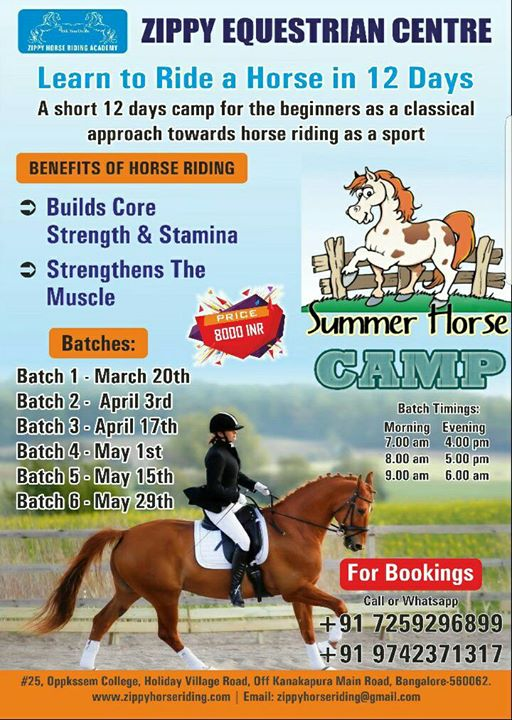Horse Riding Summer Camp In Bangalore