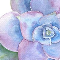 Succulent Watercolor Workshop with Adriana Lemus