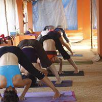 Yoga  nybegynner  Sandaker