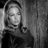 The Happening 50th Anniversary screening on 16MM film 1967 Heist Film