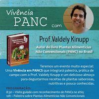 Vivncia PANC com Valdely Knupp