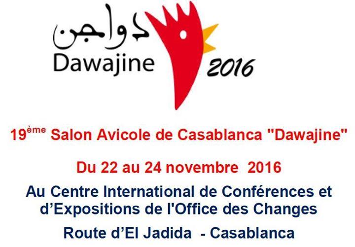 Salon dawajine at casablanca morocco casablanca for 22 changes salon