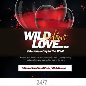 Wild About Love - Valentines Day In The Wild