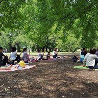 521 Yoga in Shinjukju gyoen