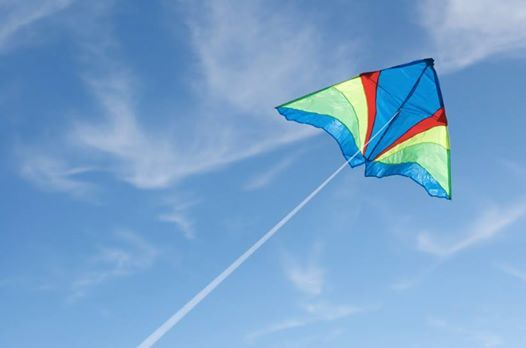 Make and fly your kite
