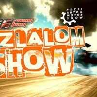 Szlalom Show - Pcsi Aut s Motor Show 0422szo  Expo Center