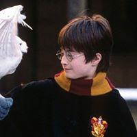 Halloween Harry Potter Yoga